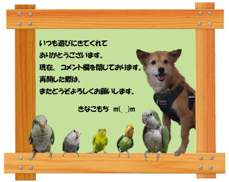 20100601__3
