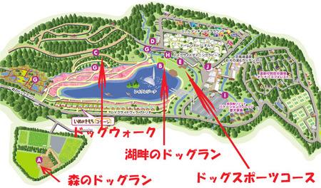 Dog_map01