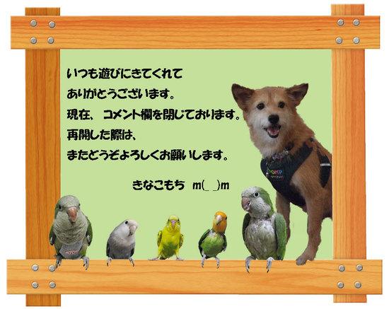 20100601__2